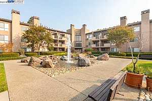 MLS # 40846407 : 39109 GUARDINO DR UNIT 340