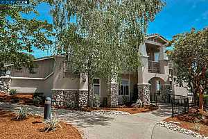 MLS # 40866524 : 517 SPOTTED OWL CT