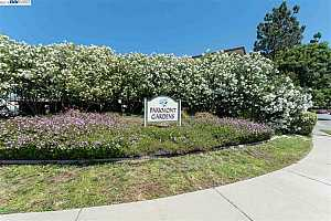 MLS # 40872846 : 38500 PASEO PADRE PKWY UNIT 301