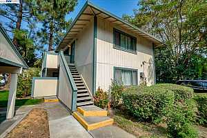 More Details about MLS # 40921054 : 2612 COPA DEL ORO DR