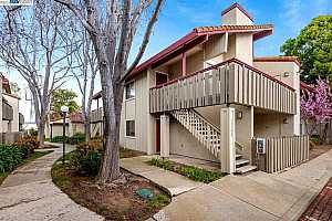 More Details about MLS # 40940942 : 35198 LIDO BLVD #F