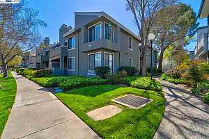 More Details about MLS # 40944214 : 39921 PARADA STREET #B
