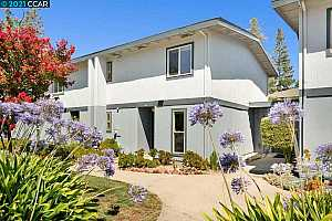 More Details about MLS # 40960056 : 1366 TREE GARDEN PL