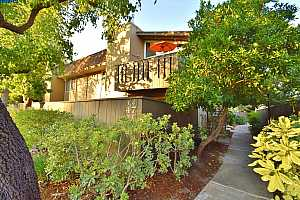 More Details about MLS # 40962604 : 47 MASSOLO DRIVE #F