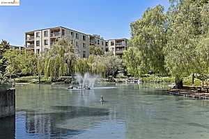 More Details about MLS # 40968219 : 310 N. CIVIC DR #303