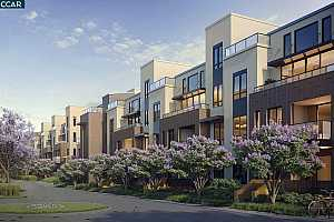 FREMONT Condos For Sale