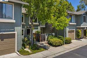 SUMMERFIELD Condos for Sale